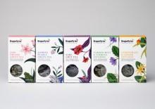 dragonfly-tea-thumbnail